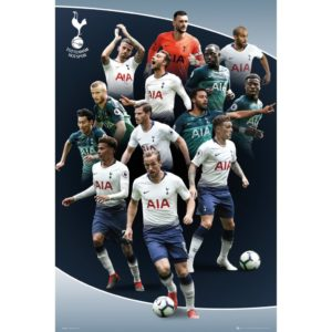 BUY TOTTENHAM 2018-19 PLAYERS COLLAGE POSTER IN WHOLESALE ONLINE